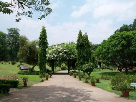 jamshedpur-bhatia park-1